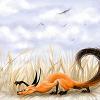 foxi6677