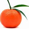Mandarinovaya