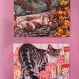 Отдается в дар Почтовые открытки с кошками