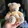 Отдается в дар «Старый» Тедди