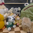 Отдается в дар Большой мешок мягких игрушек
