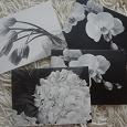 Отдается в дар черно-белые открытки