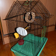 Отдается в дар Клетка для птицы