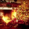 Отдается в дар Новый Год не за горами!=)