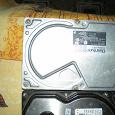 Отдается в дар Жесткие диски. HDD.