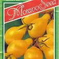 Отдается в дар Семена томата «Перун» (помидоры грушевидной формы) селекция «Moravoseed» (Чехия)