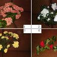 Отдается в дар цветы искусственные