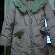 Отдается в дар куртка осень-весна L(46-48)snow owl