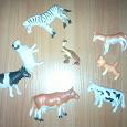 Отдается в дар игрушки животные и разные мелочи.