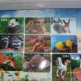 Отдается в дар Календарики 2013 год. Коллекционерам.