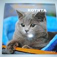 Отдается в дар Календарь с кошками