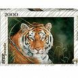 Отдается в дар Паззл тигр