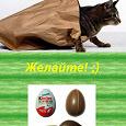 Отдается в дар Киндер-сюрприз «кот»
