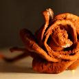 Отдается в дар Карловарская роза