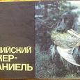 Отдается в дар Книжки о собаках