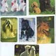 Отдается в дар Карманные календарики. Часть 3 — собаки