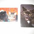 Отдается в дар Календарики с кошками старые