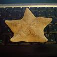 Отдается в дар морская звезда