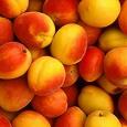Отдается в дар Кг абрикос