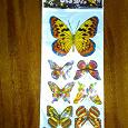 Отдается в дар Бабочки магниты на холодильник