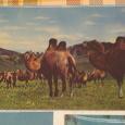 Отдается в дар открытки советские «3D»