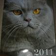 Отдается в дар Календарь с кошками на 2011 г