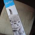 Отдается в дар календарь с кошками на 2010