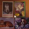 Отдается в дар Календарики кошки и собака