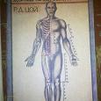 Отдается в дар Книжица — нетрадиционная медицина