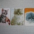 Отдается в дар календарики-кошки