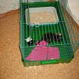 Отдается в дар Клетка для кролика