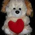 Отдается в дар Собака — мягкая игрушка