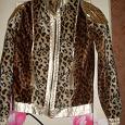 Отдается в дар курточка от Roberto Cavalli