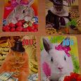 Отдается в дар Календарики с символом предстоящего года.