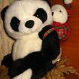 Отдается в дар Мягкие игрушки. Львёнок и панда с пандёнком.
