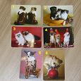 Отдается в дар Календарики — кошки-собаки (3)