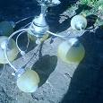 Отдается в дар Люстра на 6 лампочек