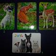 Отдается в дар Календарики на 2014 (животные, природа)