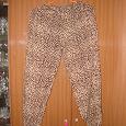 Отдается в дар штаны летние леопард размер 46-48