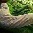 Отдается в дар подушка для беременных и кормящих мам