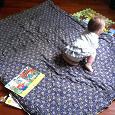 Отдается в дар одеяло-спальник