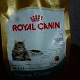 Отдается в дар Полный пакет кошачьего корма «Роял Канин»