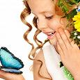 Отдается в дар Выставка бабочек