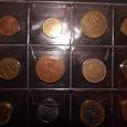 Отдается в дар Кот монетный, прозрачный