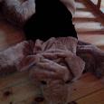Отдается в дар собакин, коврик-игрушка