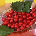 Отдается в дар Плоды боярышника