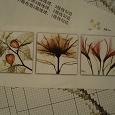 Отдается в дар Набор для вышивания «Цветы в рентгене»