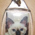 Отдается в дар брелок с тайскими кошками