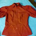 Отдается в дар блузки 44 р. красная и коричневая