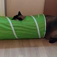 Отдается в дар Тоннель для котиков